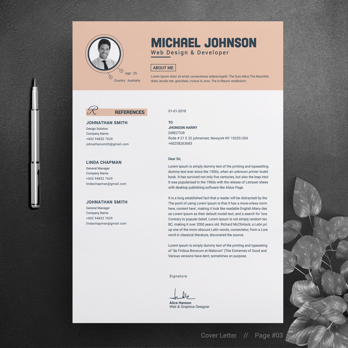 michael johnson resume template  73844