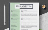 Szablon resume Erina #82319