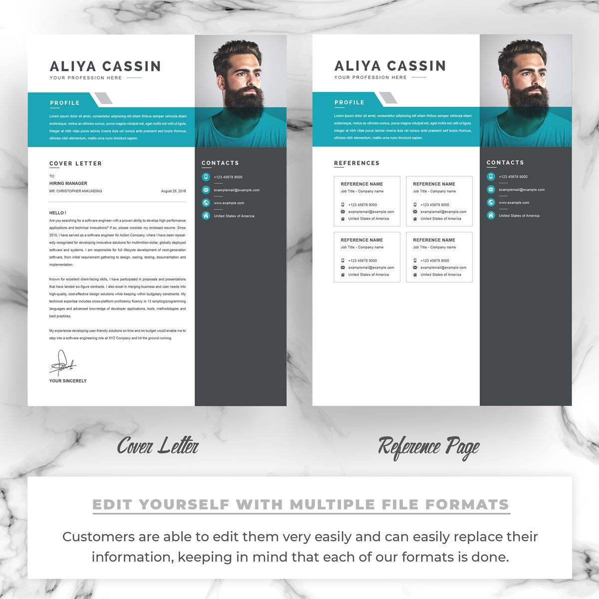 https://s3u.tmimgcdn.com/1860567-1583588749620_03_Resume-Template-MS-Word-Free-Resume-CV-Design.jpg