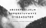 The Everyday Font Duo Font
