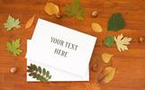 Autumn Journey Mockups & Photos Bundle Product Mockup