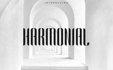 "Шрифт ""Harmonial Font Family - Sans Serif"""