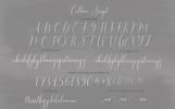 Callem Script Betűtípus
