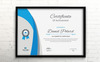 Vintage Elegant Certificate Template Big Screenshot
