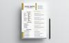Szablon resume John Smith #77713 Duży zrzut ekranu