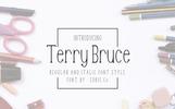"""Font """"TerryBruce"""""""