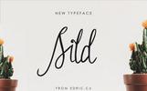 Sild Beauty Font