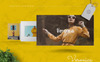 Veronica - Fashion Keynote Keynote Template Big Screenshot