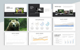 Animal Charity PowerPoint Template