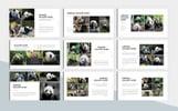 Premium Animal Charity PowerPointmall