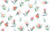 19 Tender Summer Flowers Illustration Big Screenshot