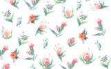 19 Tender Summer Flowers Illustration