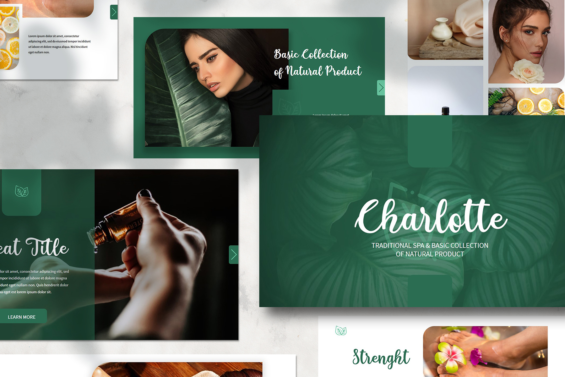 Charlotte Presentation PowerPoint Template