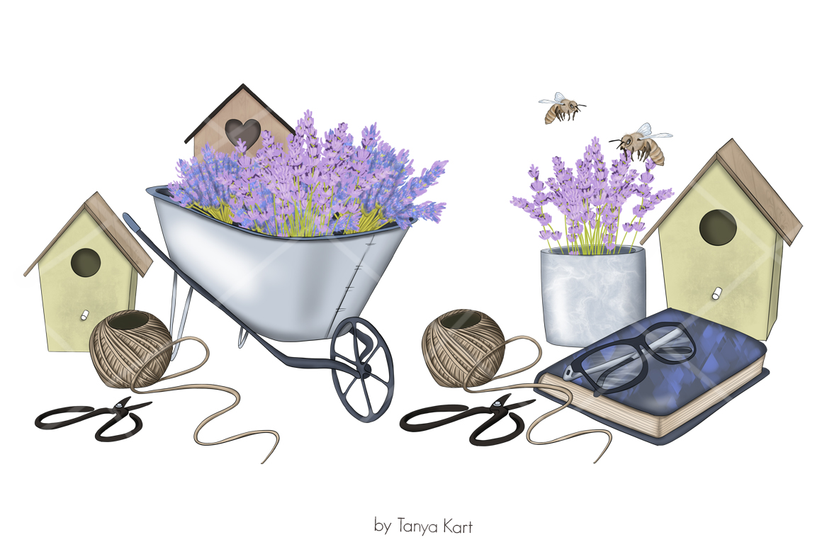 https://s3u.tmimgcdn.com/2230176-1584790552666_lavender5.jpg