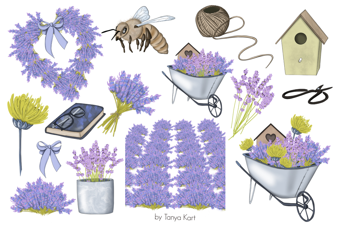 https://s3u.tmimgcdn.com/2230176-1584790557162_lavender6.jpg