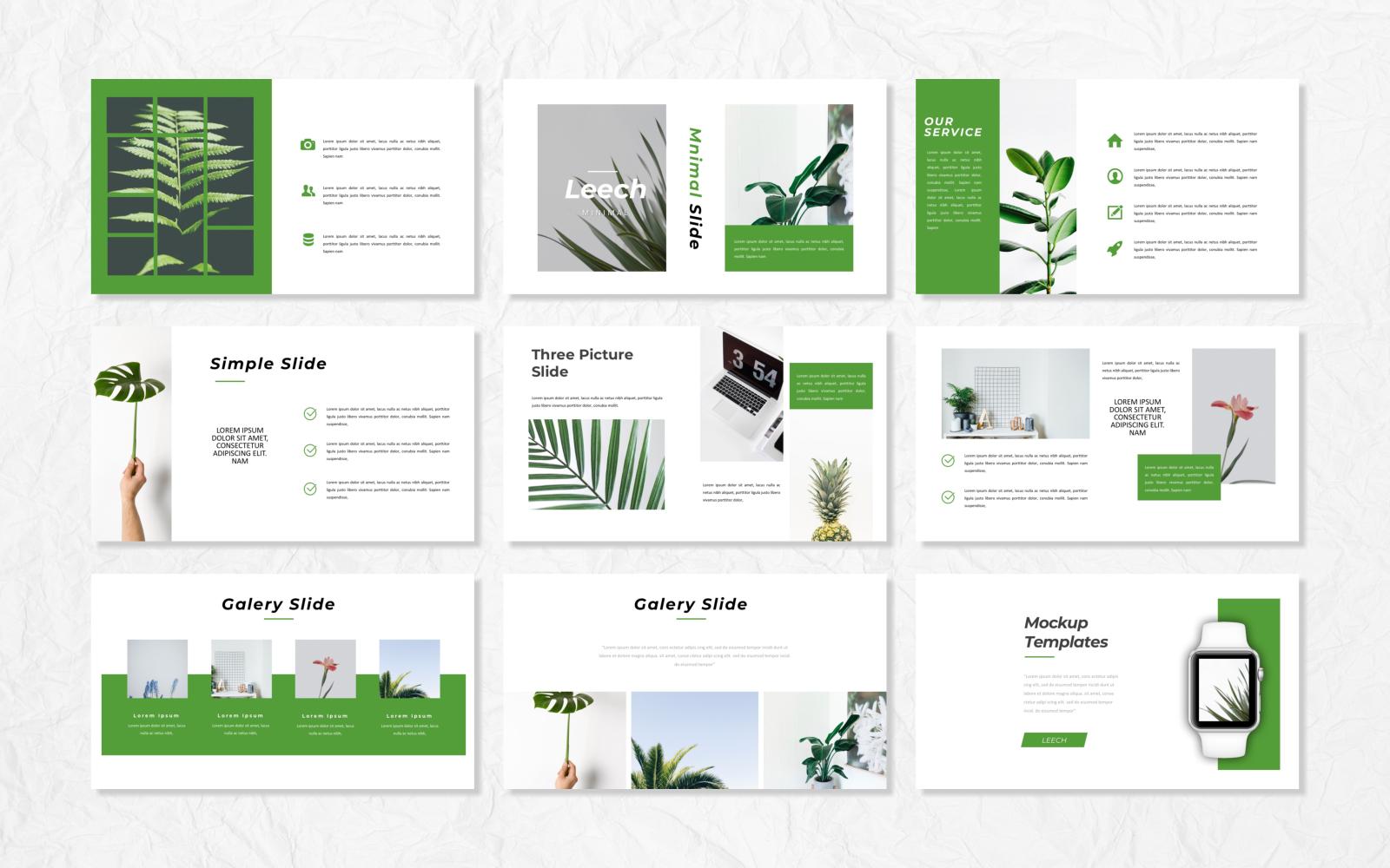 Leech - Creative Presentation PowerPoint Template