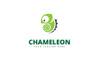 Chameleon Brand Logo Template Big Screenshot