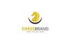 Chess Brand - Logo Template Big Screenshot